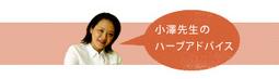 小澤先生のハーブアドバイス